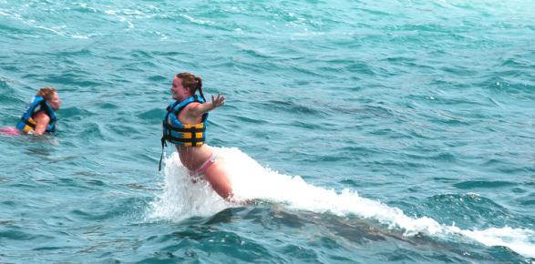 пуш ап дельфины вверх