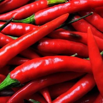 Особенности мексиканской кухни