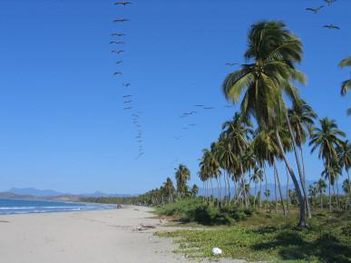 Пляж Икстапы Плая Линда