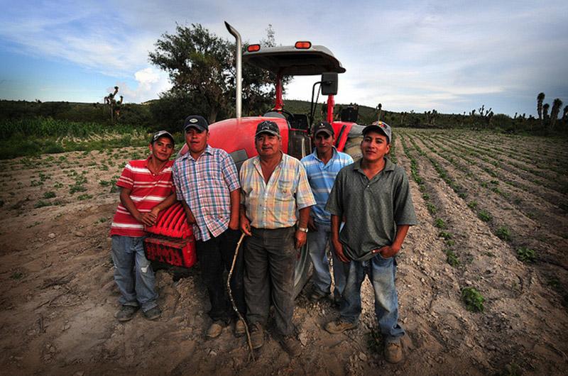 Работники сельхозяйственной плантации в Мексике