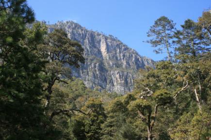 Гора Сьерро дель Виехо, Нуэво Леон, Мексика