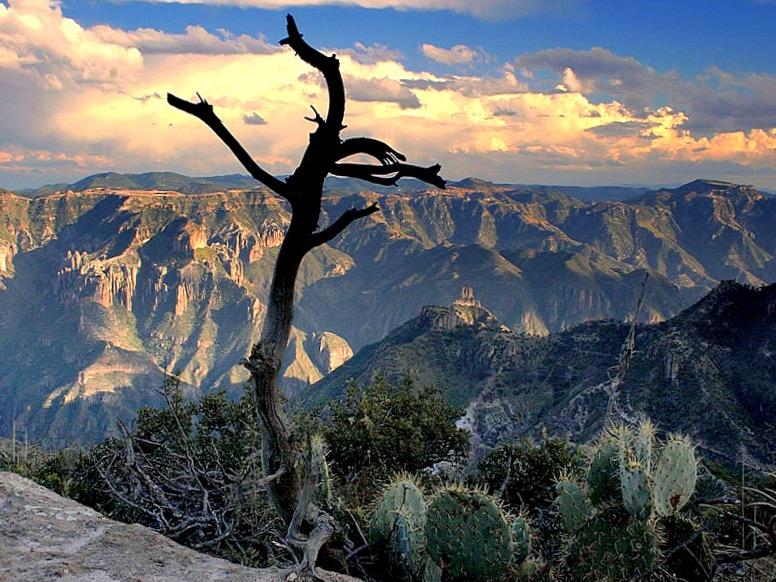 Самый красивый каньон Мексики. Медный Каньон