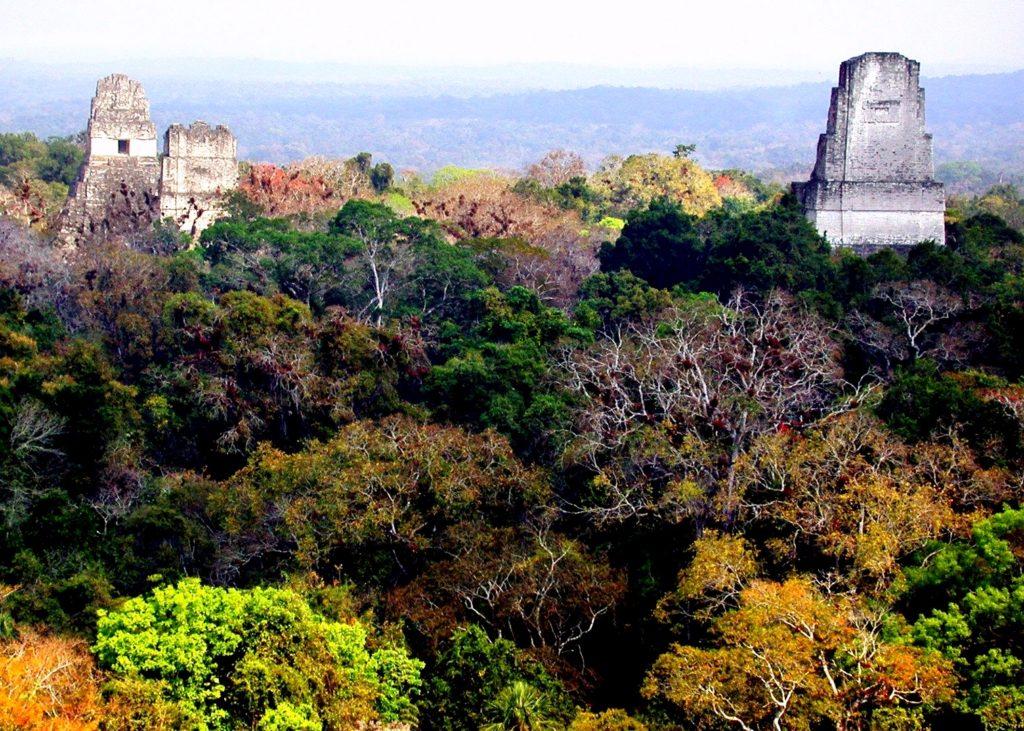Самая высокая пирамида древнего города Тикаль - Храм Двуглавого Змея, Гватемала