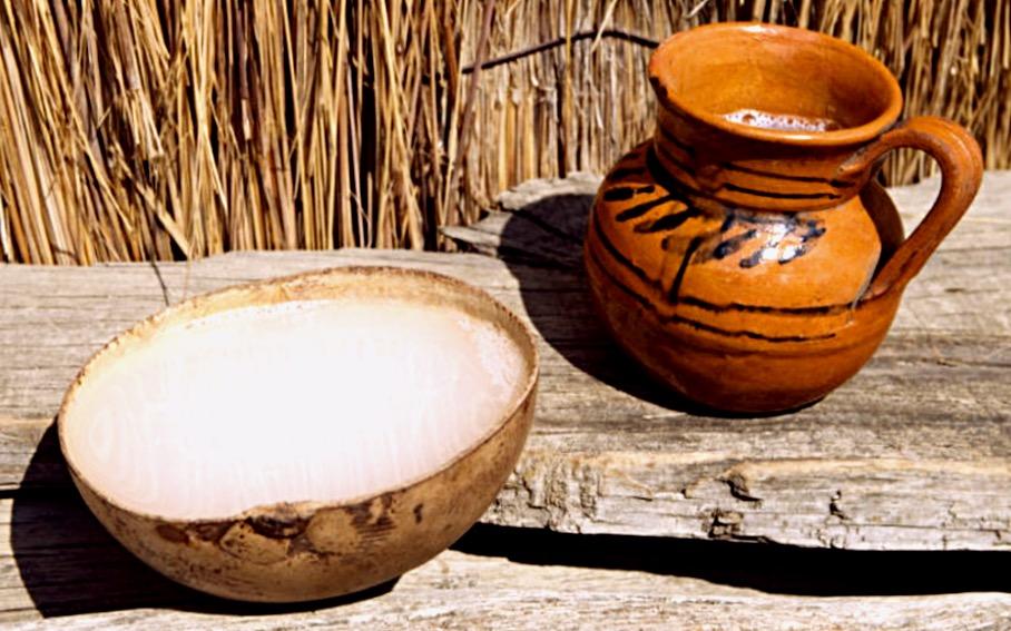Пульке - алкогольный напиток коренного населения Мексики, Сантьяго де Текила, Халиско
