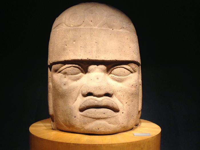 Голова ольмека в музее антропологии