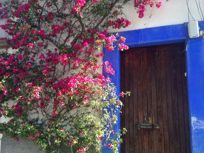 Цветущий город революции Долорес Идальго