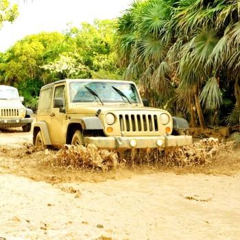 Сафари на джипах по заповеднику среди манговых джунглей. Сиан Каан - лучший способ уединиться на лоне природы