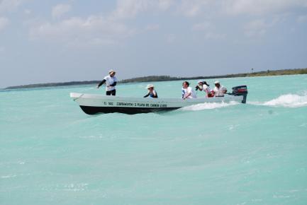 Черепахи лодка в Мексике