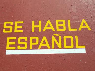 Язык Мексика