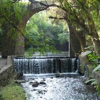 Парк в ботаническом саду Борда, Морелос, Мексика