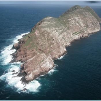Остров Коронадо - место обитания множества морских животных