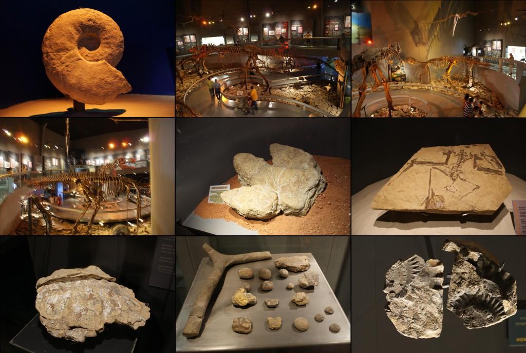 Экспатнаты в Музее Пустыни, Сальтильо, Коауила, Мексика