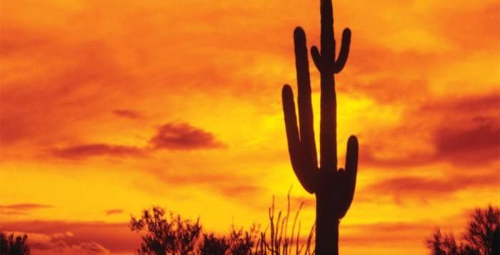Туры по Мексике с индивидуальным гидом. Познавательные и экскурсионные туры и программы с русскими гидами в Канкуне