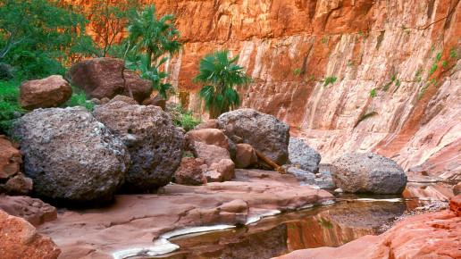 Яркие краски в Медном каньоне