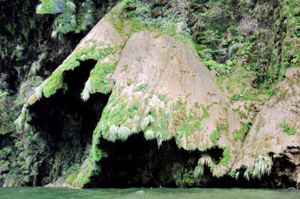 Водопаду Рождественское Дерево дали название, так как он очень напоминает нвоогоднюю елку, Каньон Сумидеро