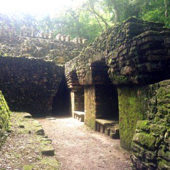 Яшчилан - город зеленых камней. Культурное наследие Мексики.