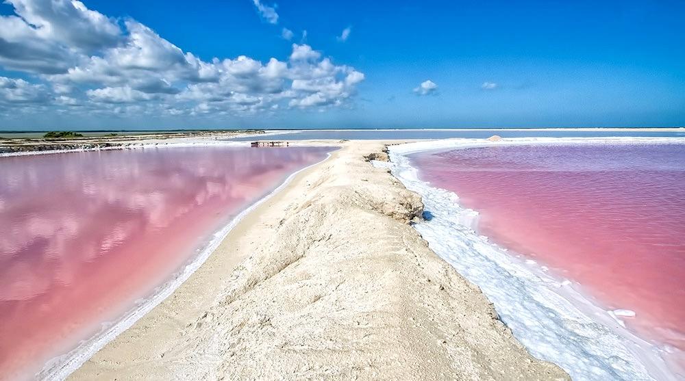 Вода нежно розового цвета в заповеднике Рио Лагартос, Мексика