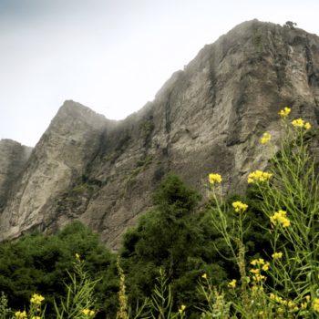 Минераль-дель-Чико