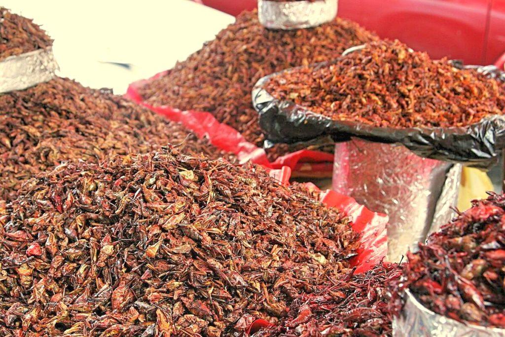 Оахаканские чапулинес